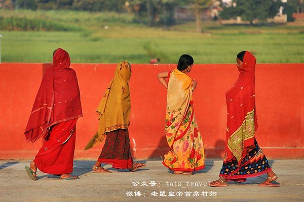 印度火车奇葩无限(印度连载) - 老鼠皇帝首席村妇 - 心底有路,大爱无疆