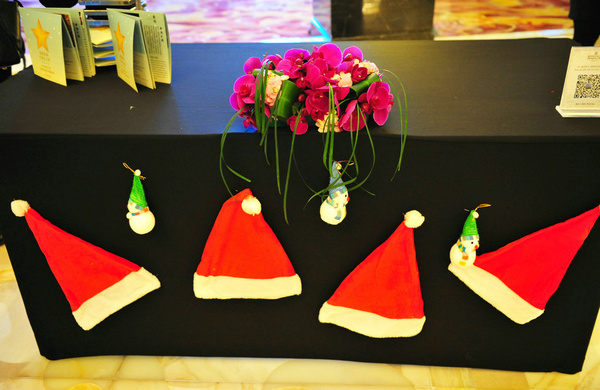 圣诞点灯/在香格里拉过个温情周末 - 淡雅~如菊 - 淡雅`如菊 ⌒_⌒ 爱摄影 爱生活