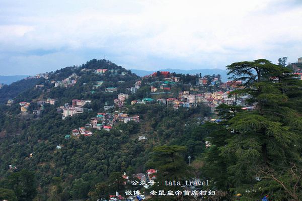 西姆拉:最不像印度的城市(印度连载58) - 老鼠皇帝首席村妇 - 心底有路,大爱无疆